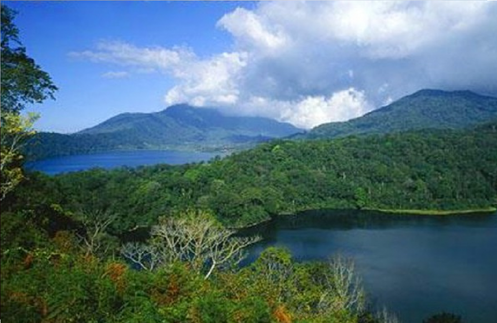 Twin lake Jungle Tour